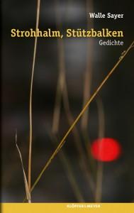 »Strohhalm, Stützbalken« von Walle Sayer