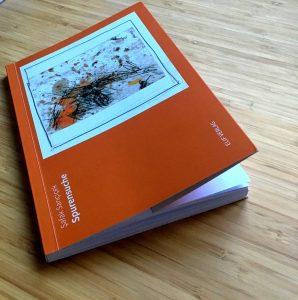 Şafak Sarıçiçek: spurensuche (erschienen im Elif-Verlag)