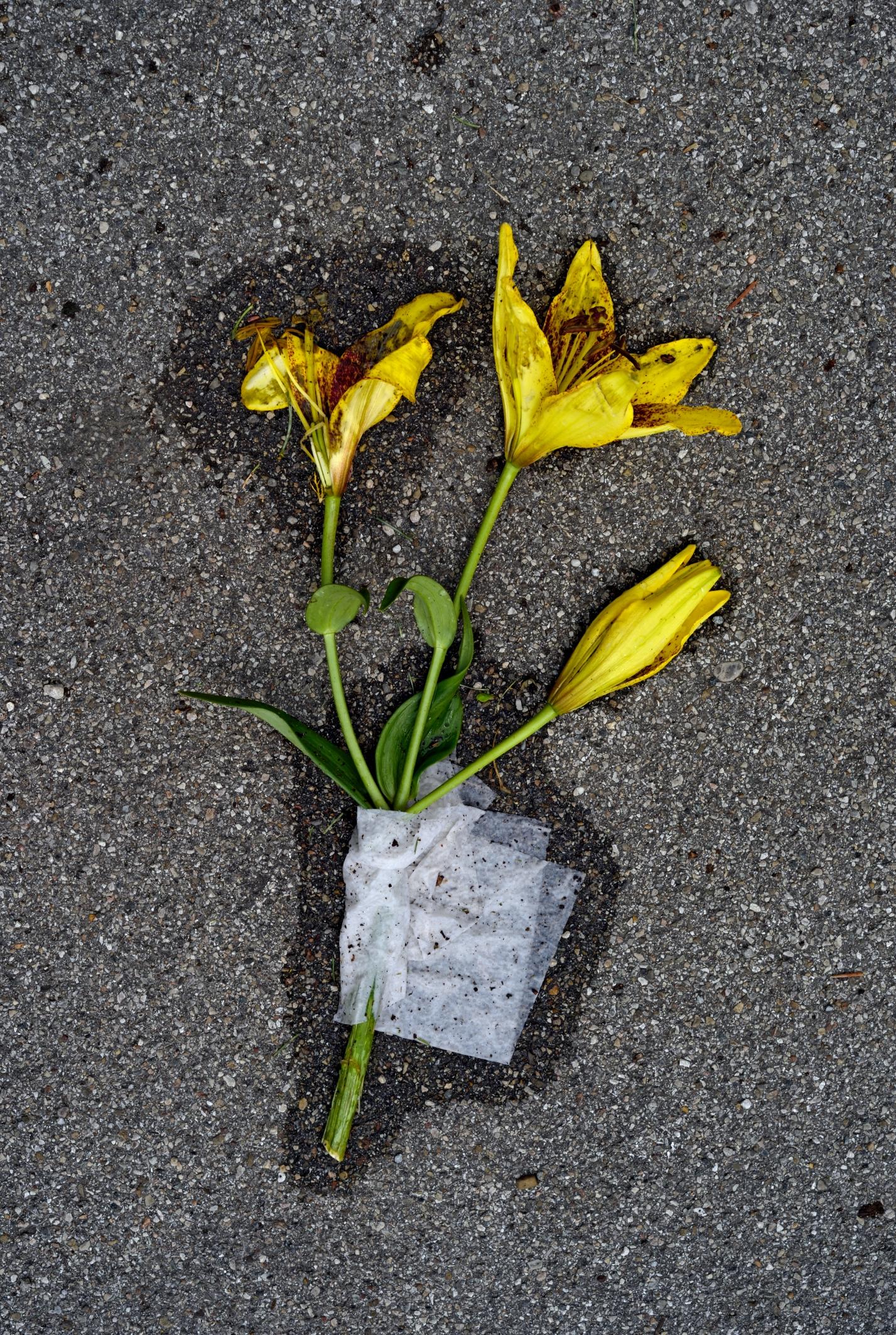 Poesie im öffentlichen Raum, Folge 78. Foto: Volker Derlath