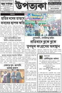 Zeitungsbericht über das Friedens- & Poesiefestival in Kolkata